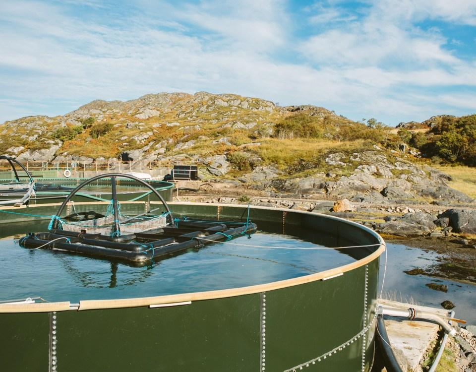 Biosecurity on Fish Farms