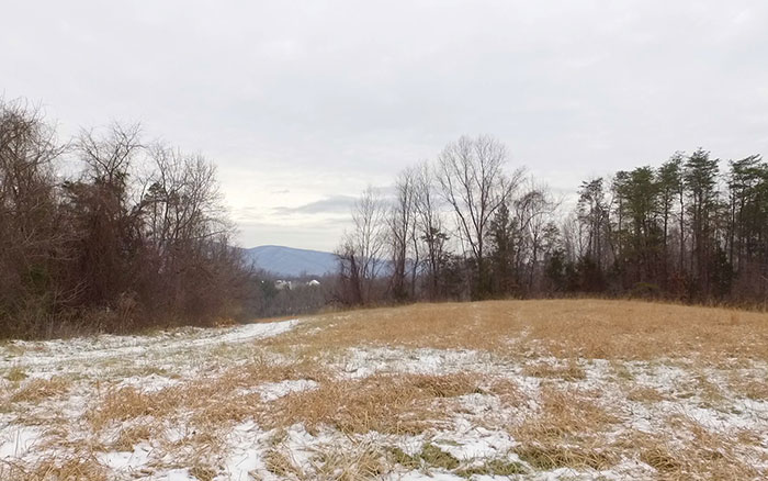 Available Land in Charlottesville Virginia, Views from Lot 10