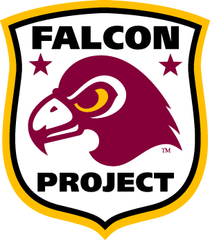 Project Falcon Image