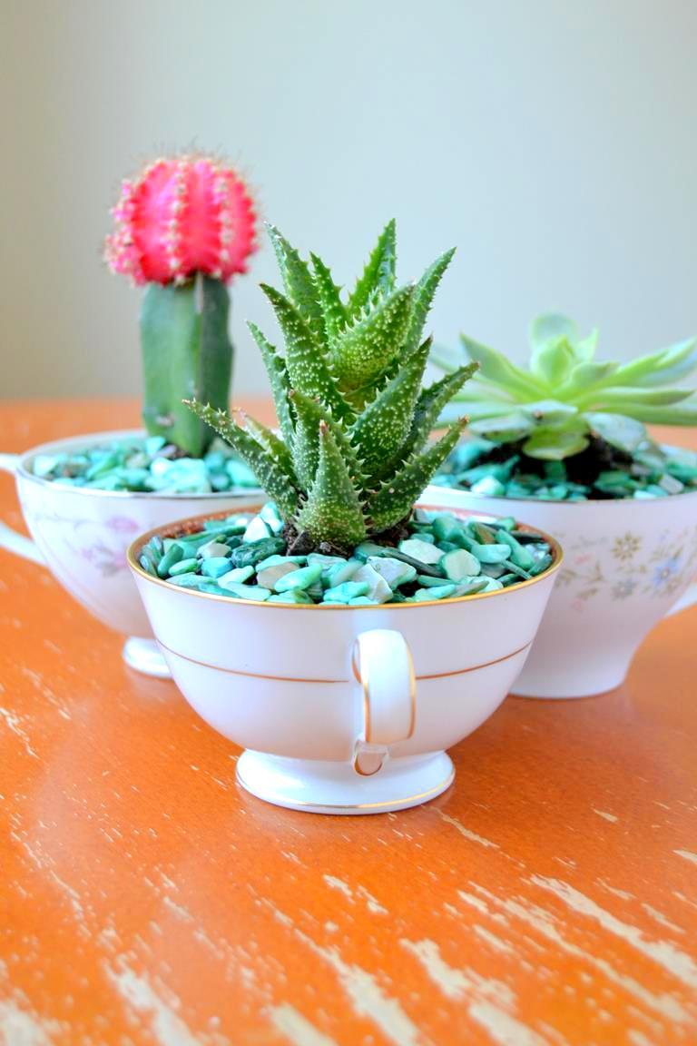 Teacup Succulent Planters