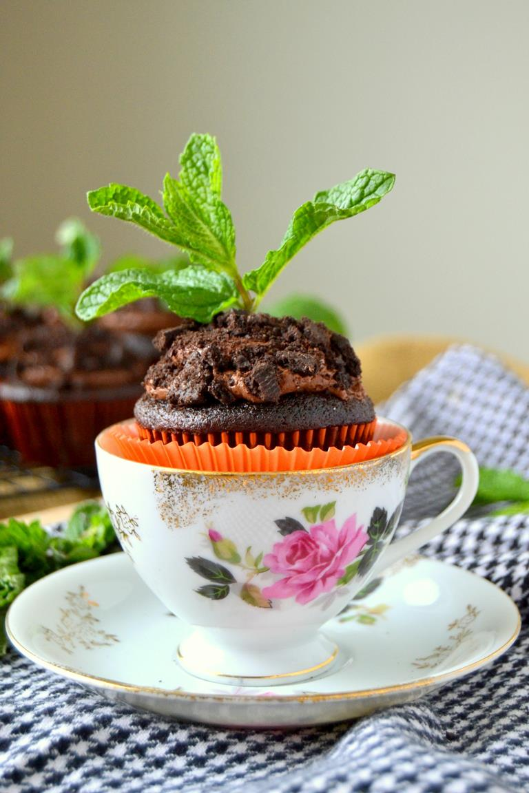 Chocolate Potted Mint Cupcakes