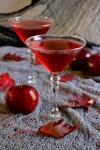Poison Apple Cider Martinis
