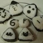 Rice Balls & Onigiri