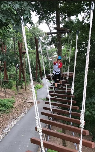 Treetop Adventure Obstacle Course