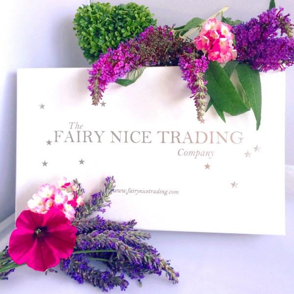 gift box the fairy nice trading company
