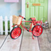 red miniature fairy bicycle
