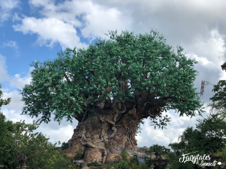 Disneys Animal Kingdom