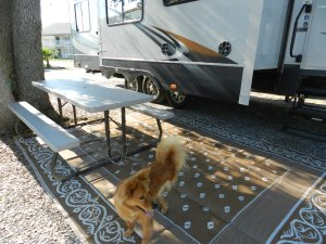 picnic tables at cajun rv park