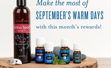 September's Promos