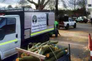 Tree Surgery in Hereford and Worcester with Faithful Tree Care