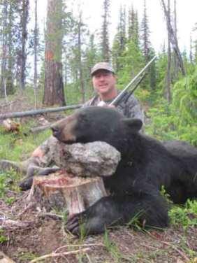 Fred-Bear-1