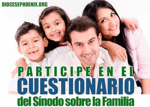 Bishops throughout the world were asked to respond to the Synod questionnaire regarding pastoral needs of families.  This poster from the Diocese of Phoenix, Arizona, encourages Hispanic families to respond to the questionnaire.
