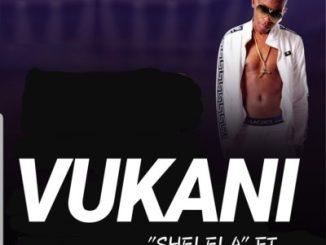 Vukani – Shelela ft. Kabza De Small