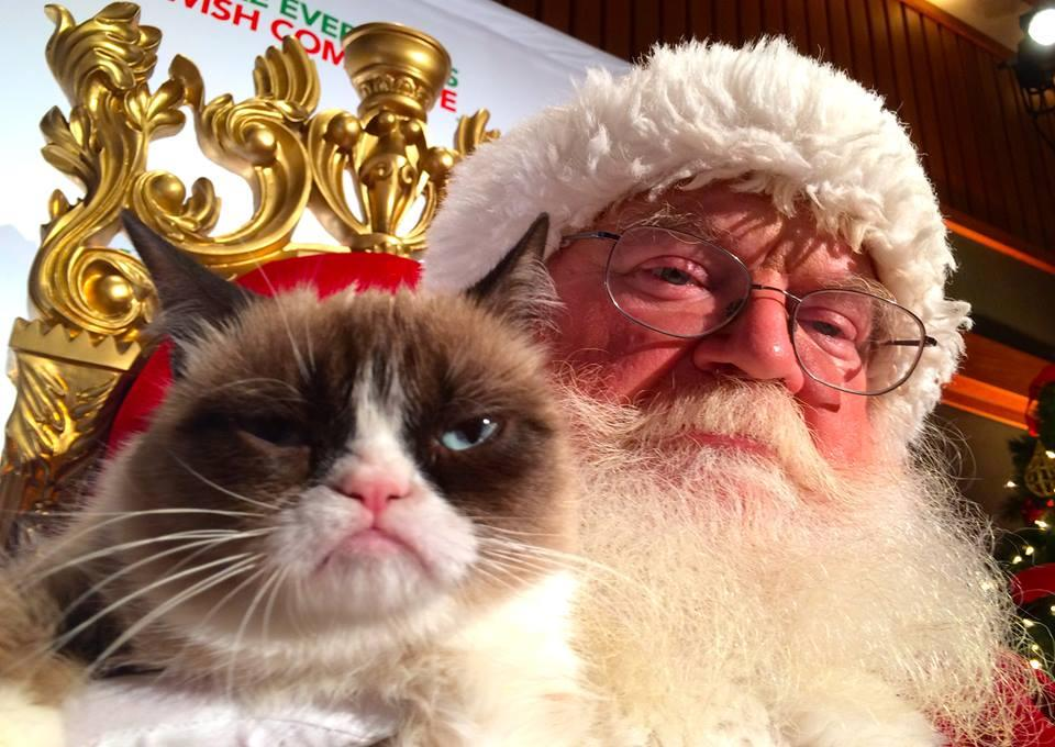 Grumpy Cat Stars in It's Hard to Be a Cat at Christmas