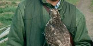 falconiere