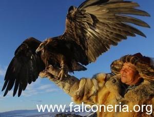 cacciatore kazaco