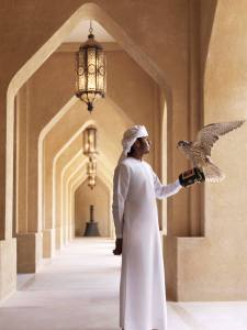 falconiere arabo