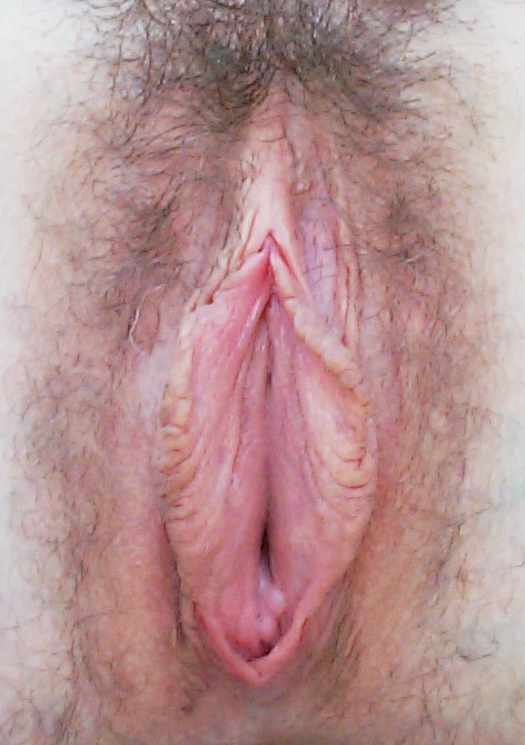 vulva during sex retreat