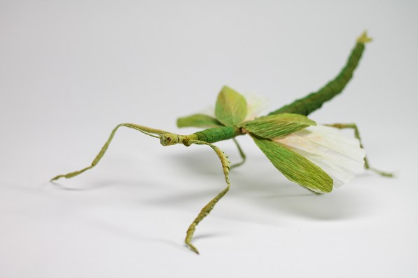 Crepe_Paper_Insects_PaperArt_Goliath_Stick_Insect_by_faltmanufaktur00