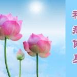 法輪功福益社會(三)