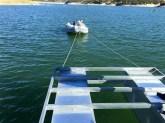 Rowing Dock 1