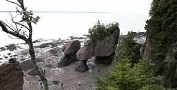 Hopewell rocks eb