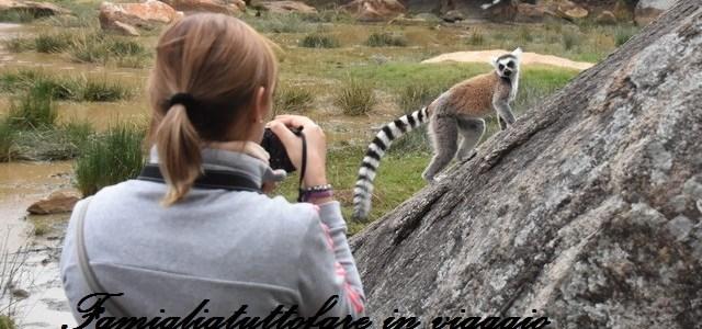 Diario di viaggio in Madagascar