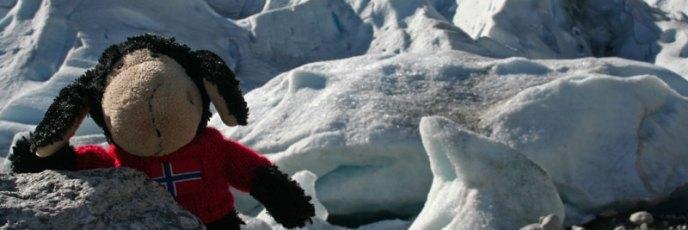 Direkt vor den Eismassen des Nigardsbreen