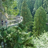 Der Cliffwalk im Capilano Park
