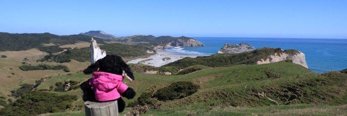 Diesen Ausblick auf den Wharariki Beach hätte ich noch ewig genießen können