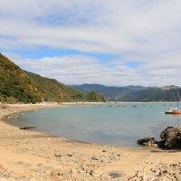 Auch dieser Strand am Taupo Point lädt zum Baden ein