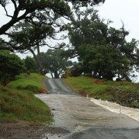 Zyklon Ita hat quasi ganz Neuseeland geflutet - wie z.B. diese Straße hier, die wir nehmen mussten