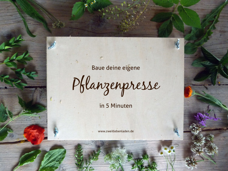 Herbarium - Pflanzenpresse selber bauen