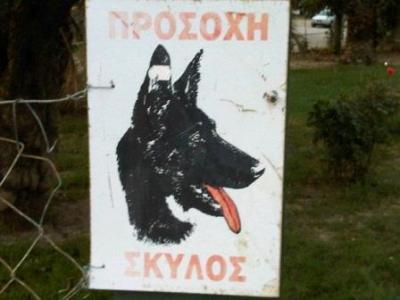 Hund - bissig?