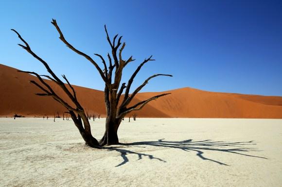 Deadvlei et la dune Big Daddy