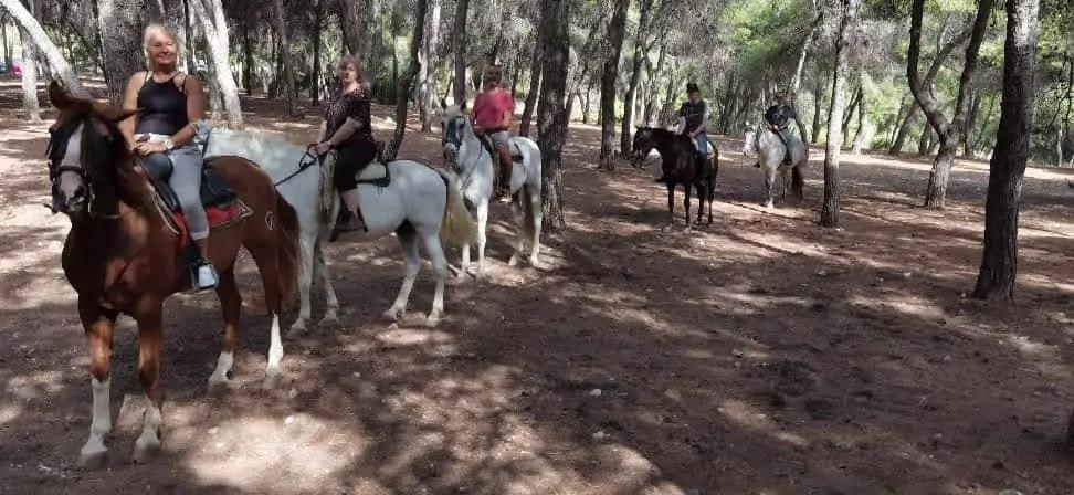 famille nomade digitale en Espagne