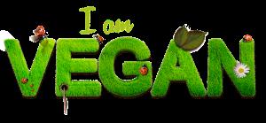 vegan recettes