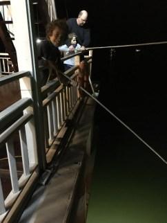 Pêche au calamard de nuit
