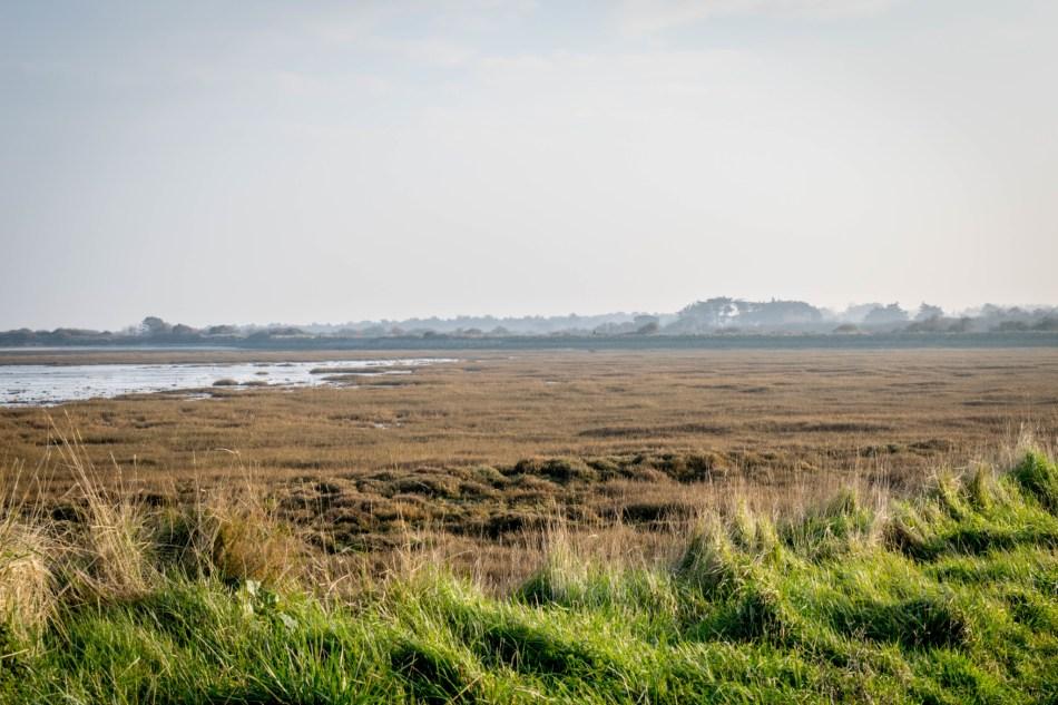 La Baie de Gouven à marée basse
