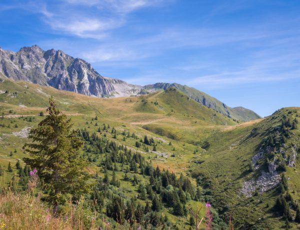 vallée de Monjoie
