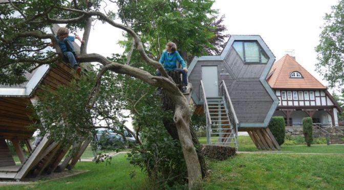 Schlafen im Baumhaus: Jugendherberge Beckerwitz an der Ostsee