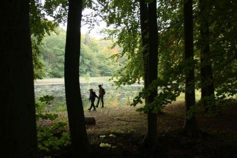 Bad Doberan Klosterteiche Wanderung