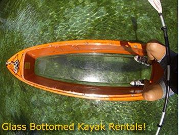 Glass Bottomed Kayak Rentals