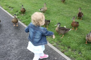 Olivia feeding the ducks