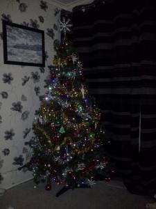 tree full