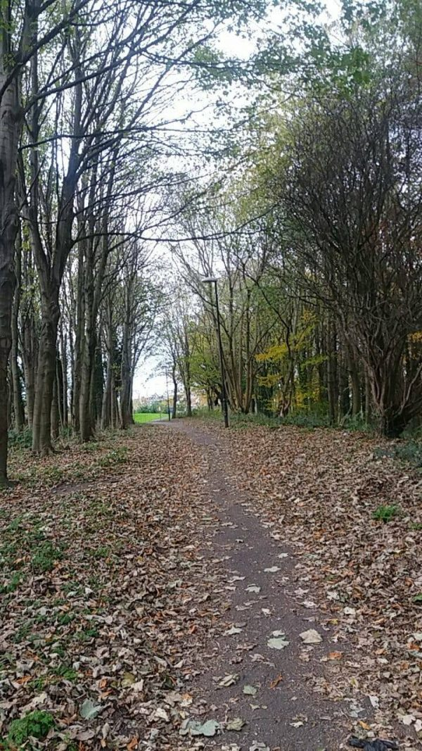 Sunday Snap Autumn Walk 19th November 2017 Family Clan