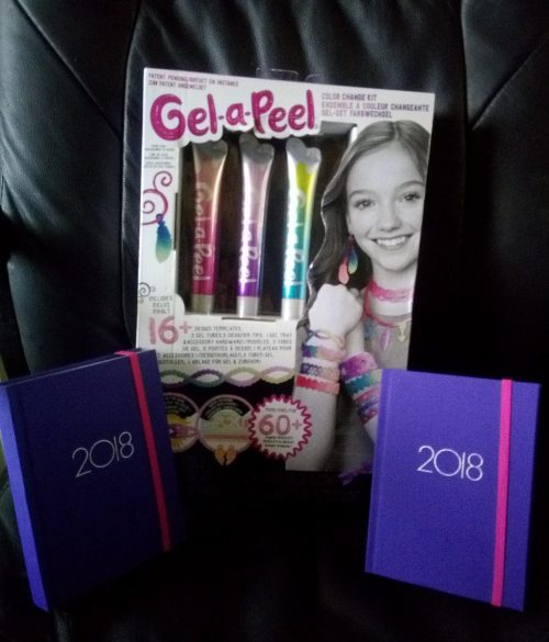 Gel-a-Peel design a diary 2018 review by Family Clan