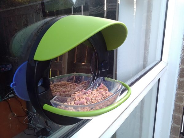 My Living World Window Bird Feeder review by Family Clan 2