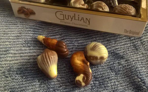 Guylian Belgian Chocolates Review Family Clan