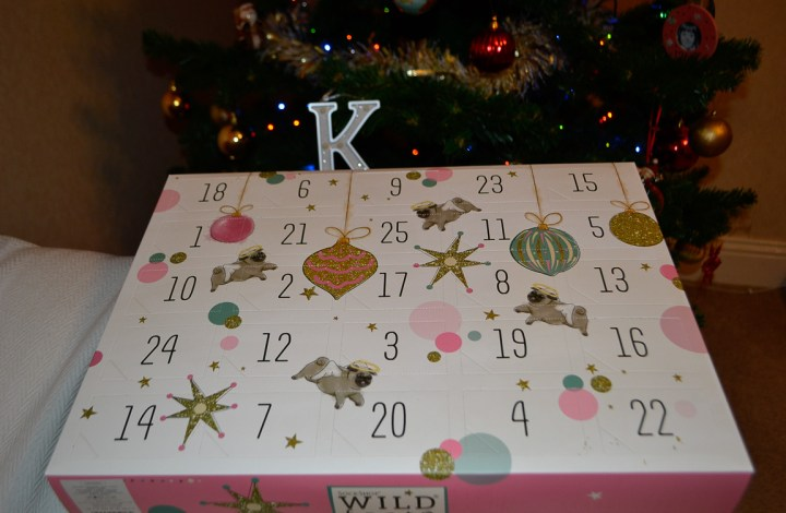 SockShop Wild Feet Christmas Advent Calendar